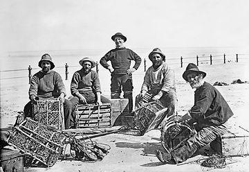 maison ambroisie conserve bio conserverie huitres tartinables rillettes cap-ferret terrines artisanale producteur dégustation