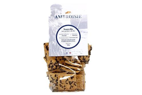 Toasts Bio aux graines de lin