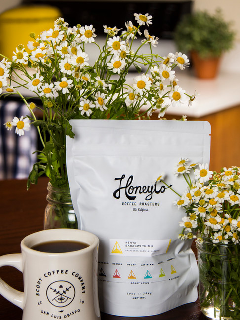 honey co X scout coffee