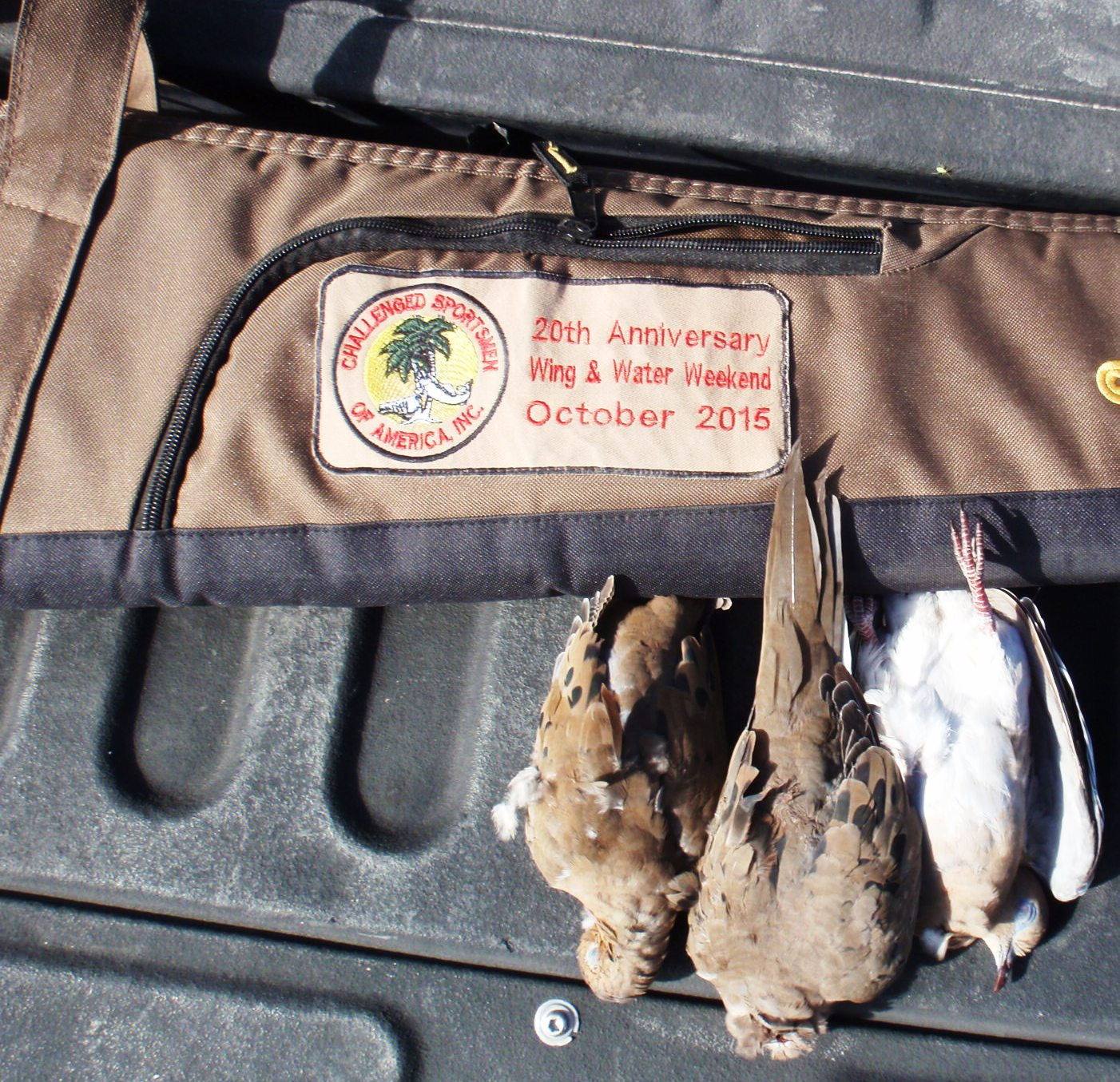 Mitch's First Doves With His Commemorative Shotgun