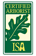ISA Cert Arb Angle LEFT.png