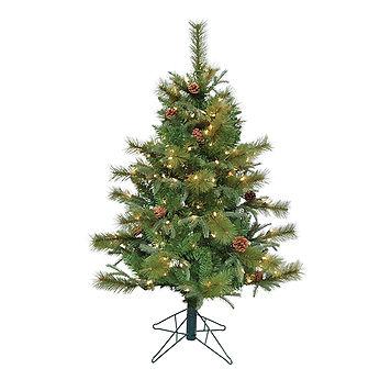 Bryson Pine.jpg