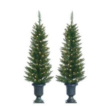 Potted Cedar Pine Tree (Set of 2).jpg