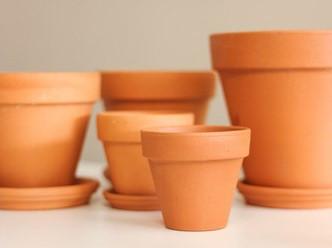 Terra Cotta Pottery.jpg