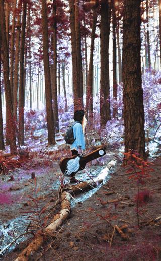 Devin Harmer • Vinyl Album Art • 2018