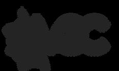 vgc logo - black grey- v2.png