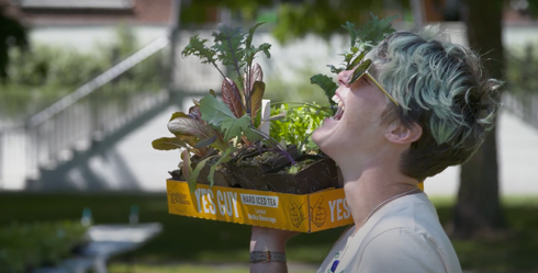 Person laughing as they hold a box of seedlings