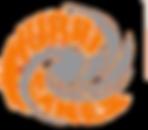 hurricanes logo t.png