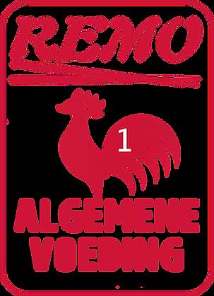 REMO-LOGO-big NEW.png
