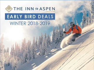 "Wyndham ""Early Ski"" Email Blast Campaign"