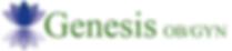 Updated Genesis Logo.png