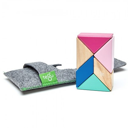Tegu 6 Piece Magnetic Pocket Pouch - Blossom