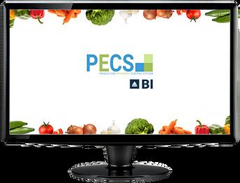 2021_BI_PCS_1200pix.png