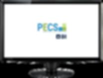 BI_PCS.png