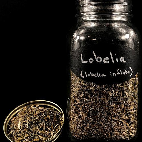 Lobelia   ORGANIC   (Sold per ounce)