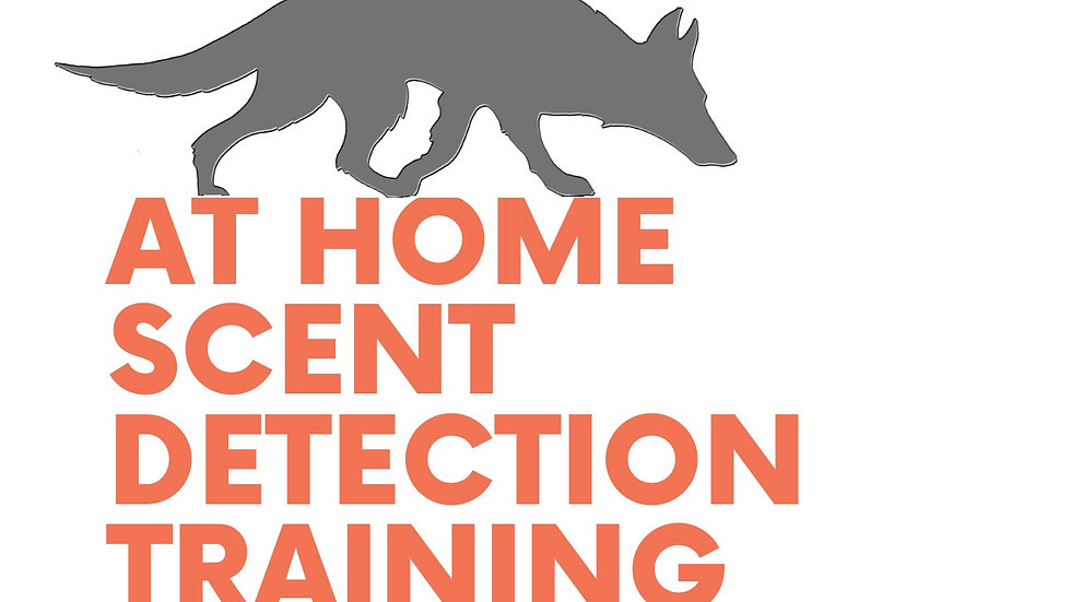At home Scent Detection
