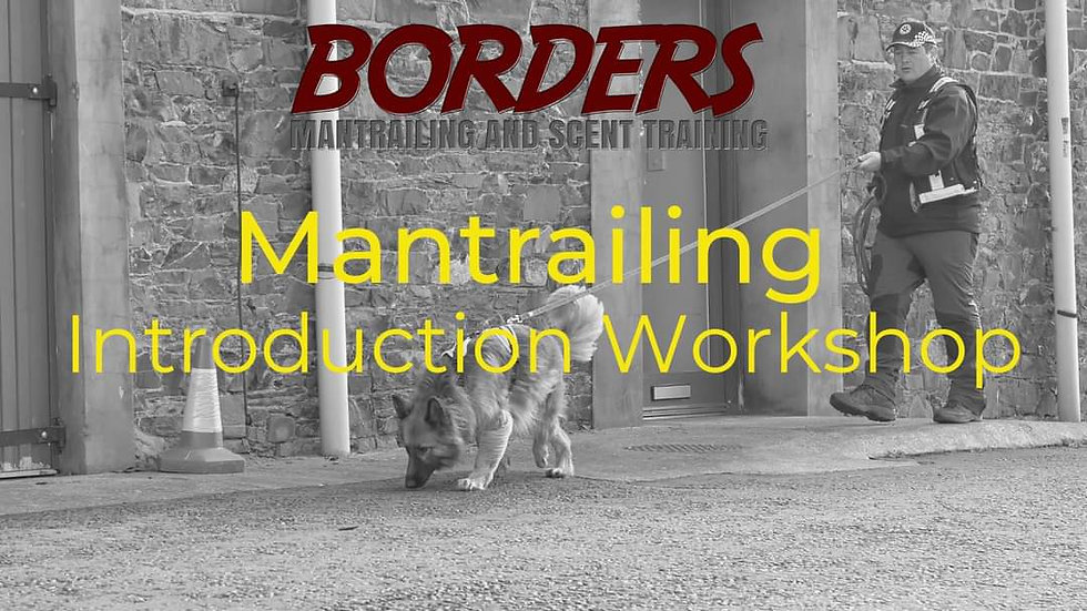 Mantrailing Introduction Workshop