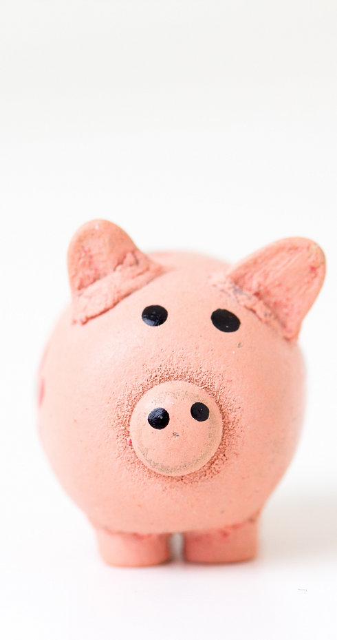 Cute piggy bank_edited.jpg