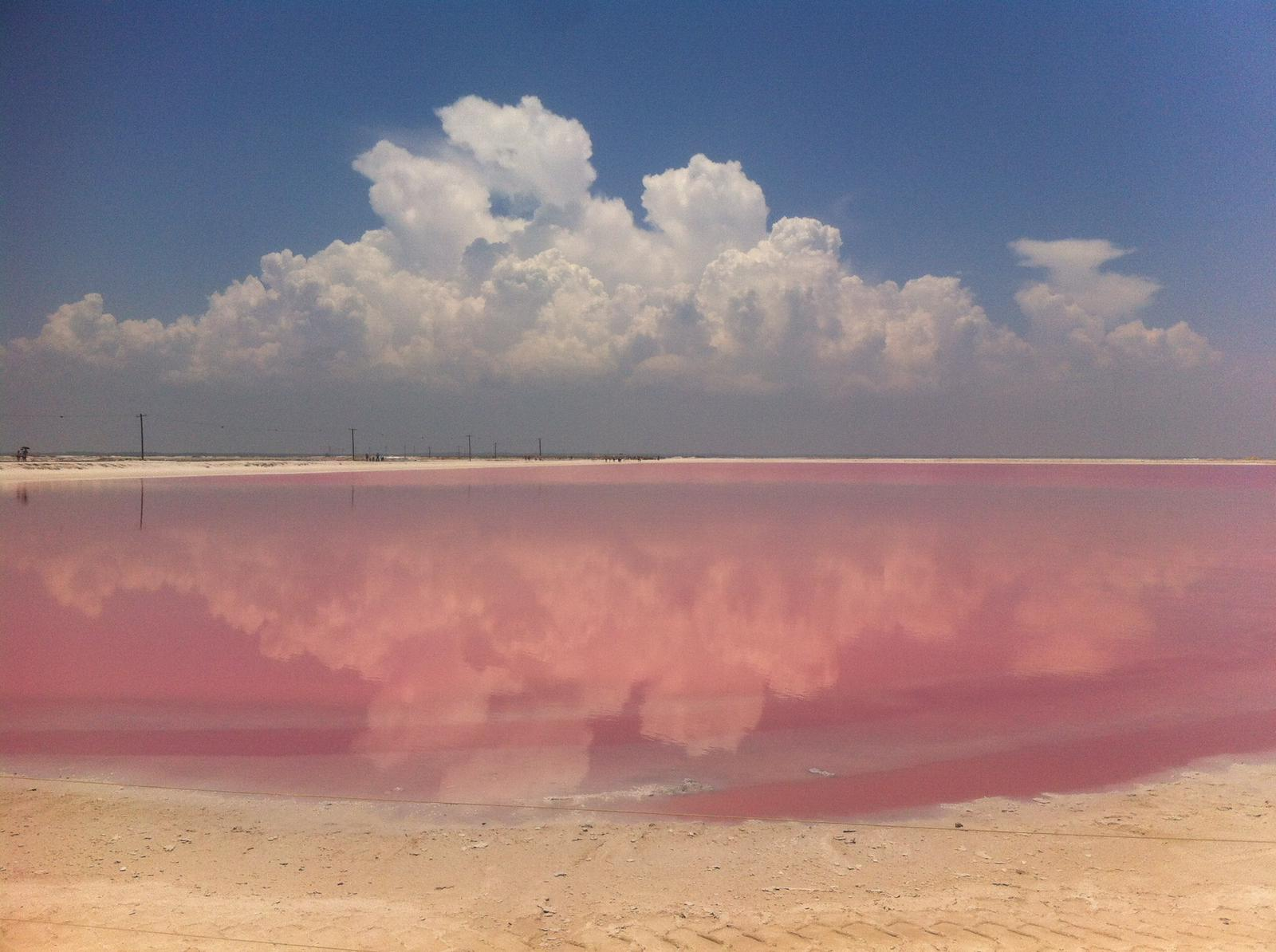 Las coloradas © Julie Cassard