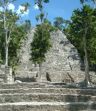 Expédition en terres mayas- Excursions d'une journée- Archéologie de mésoamérique- Coba Nature- Culture and histoire- Jungle ecologie et faune- gastronomie locale- tourisme écologique- Yucatan- Punta Laguna