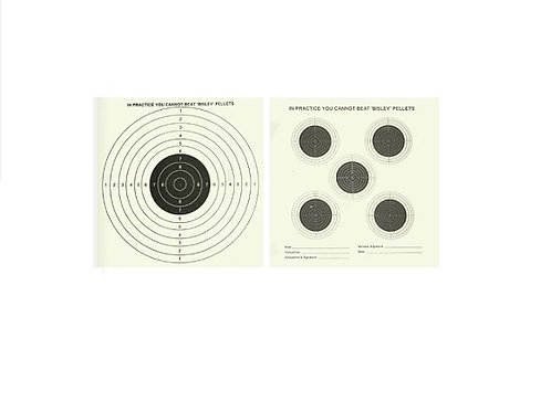 BISLEY DOUBLE SIDED TARGETS 5+1 GRADE 1