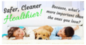 Safer, Cleaner, Healthier!  Safe for your family and your pets!