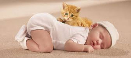 Baby and kitten sleeping on clean carpet