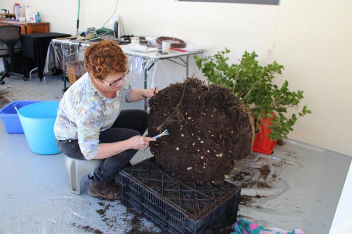 Kimberly takes more soil away