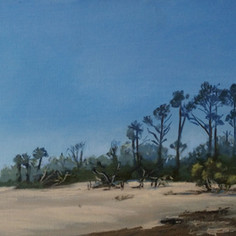 Deserted Beach, Little Tybee Island
