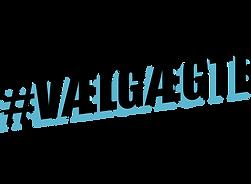 vaelgaegte_logo-1.png
