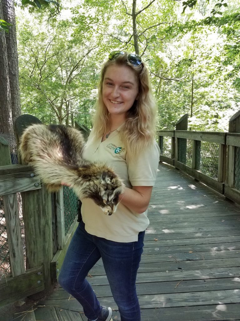 Hailey Fisher is engaging guests with an artifact - a raccoon pelt on our Outdoor Trail.