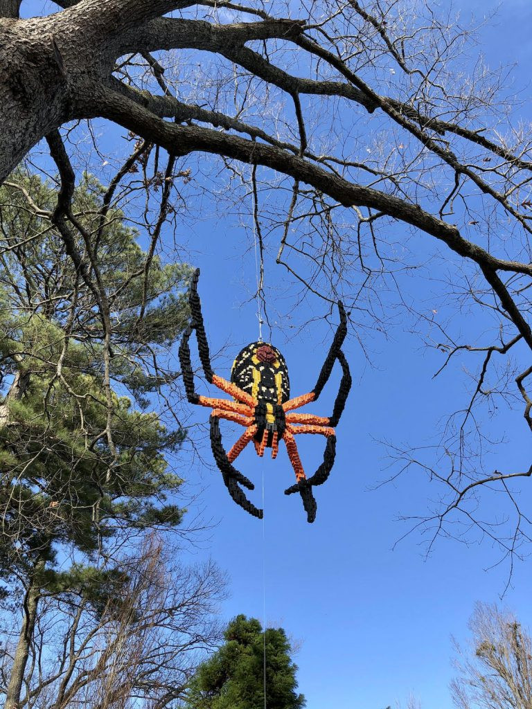 A LEGO spider dangles from a tree at the Norfolk Botanical Gardens.