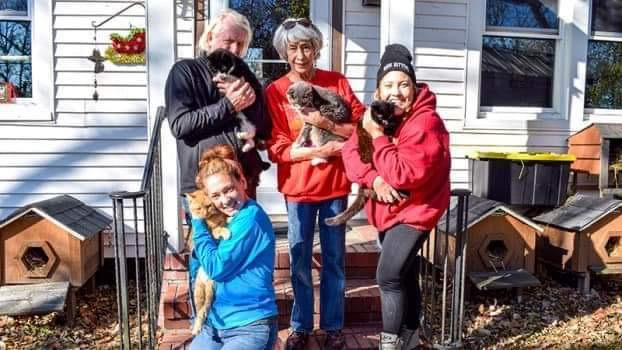 One man and three women on the steps of a house. Each person holds a cat.