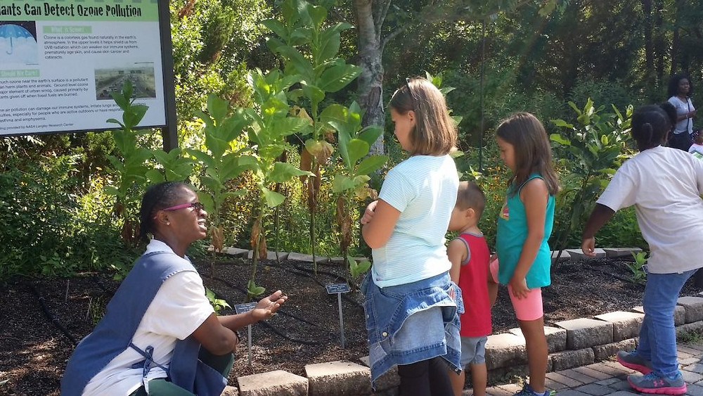 Mrs. Jackie Weber is talking to guests in our Ozone Garden about the effects of pollution on plant life.