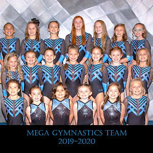 MEGA Gymnastics Team