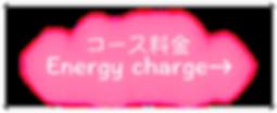 ピュア中央バナー PNGコース料金完成.png