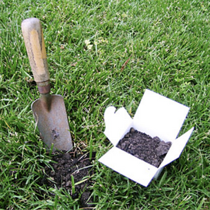 Submit a Soil Sample
