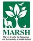 Marshlogo.png