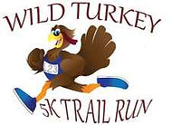 wild-turkey-5k.jpeg