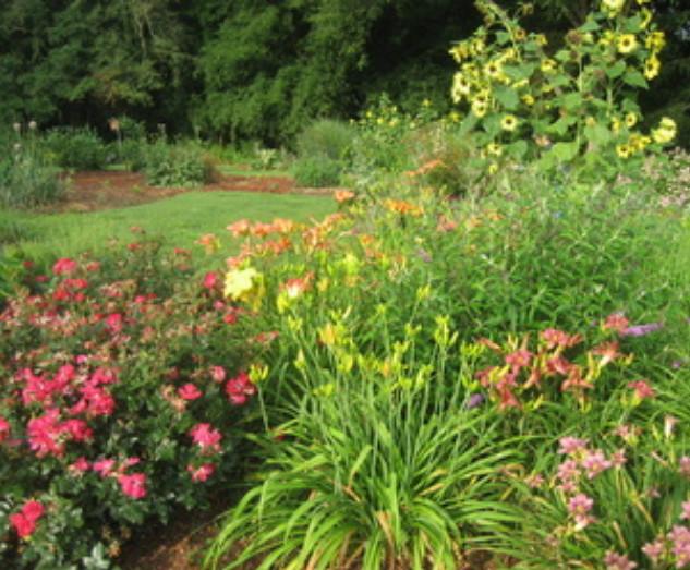 Gardening Tasks Month by Month