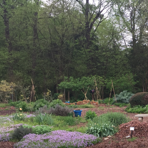 History of the Teaching Garden