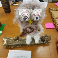 Recycled Art Contest