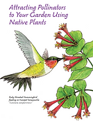 Pollinators_NativeGardens.png