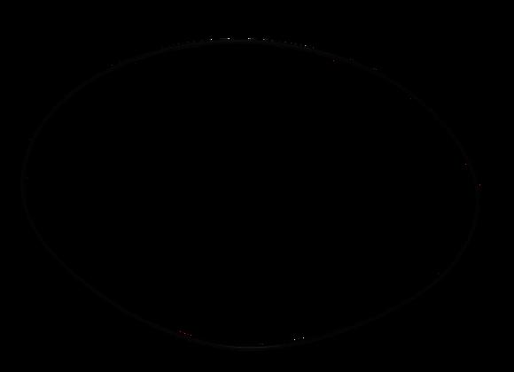 O-Ring/Cam Ring