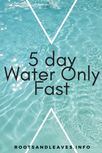 5 Day Water Only Fast