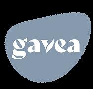 GAVEA-41.png