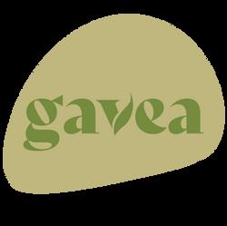 GAVEA-40