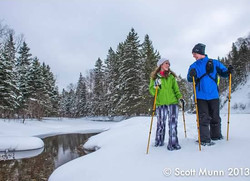 CApe Breton Snowshoeing