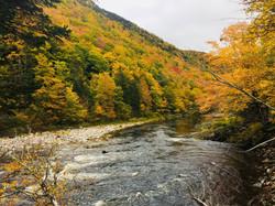 Cape Breton fall colours