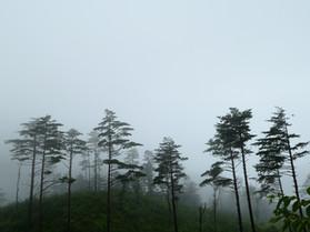 Gariwangsan(Mt.)  Bikepacking Tour(10-12 Sep.)